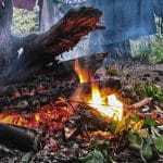 Ormanda Ateş Yakmak ve Kamp Kurmak